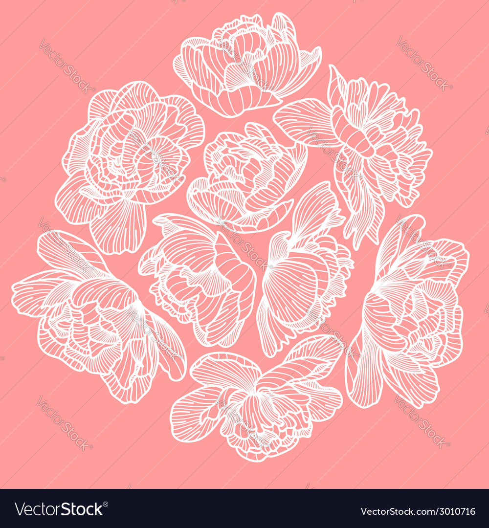 Peony drawing decorative composition vector | Price: 1 Credit (USD $1)