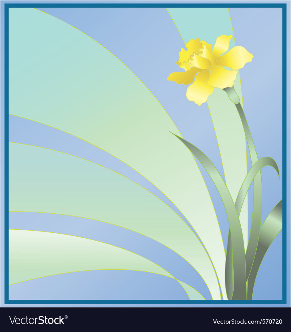 Daffodil background vector | Price: 1 Credit (USD $1)