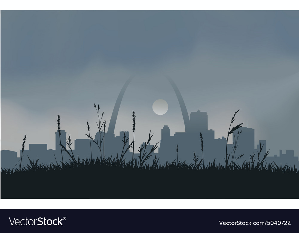 Grey saint louis sunset vector