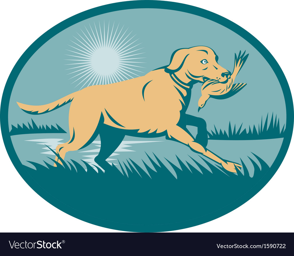 Retriever dog with bird on wetland vector | Price: 1 Credit (USD $1)