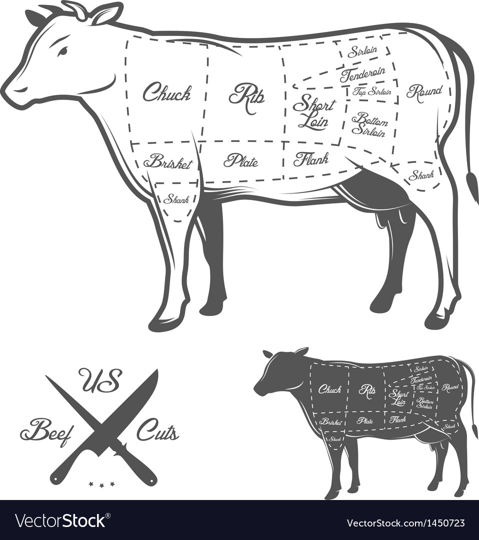 American cuts of beef vector | Price: 1 Credit (USD $1)