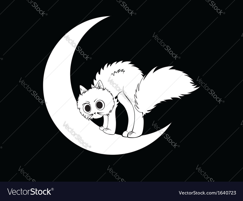 Cat sits on moon vector | Price: 1 Credit (USD $1)