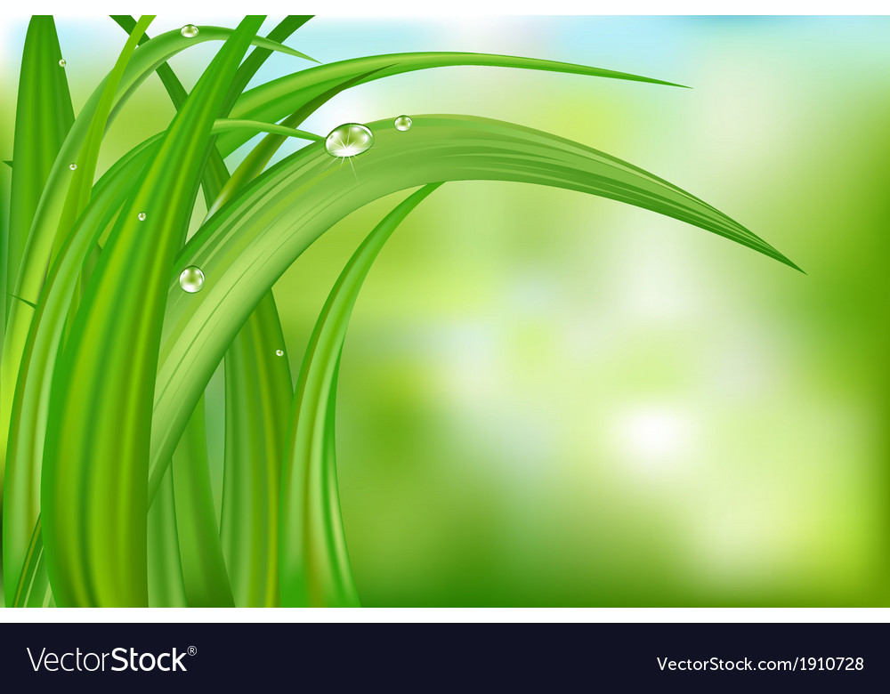 Green background with grass vector | Price: 1 Credit (USD $1)
