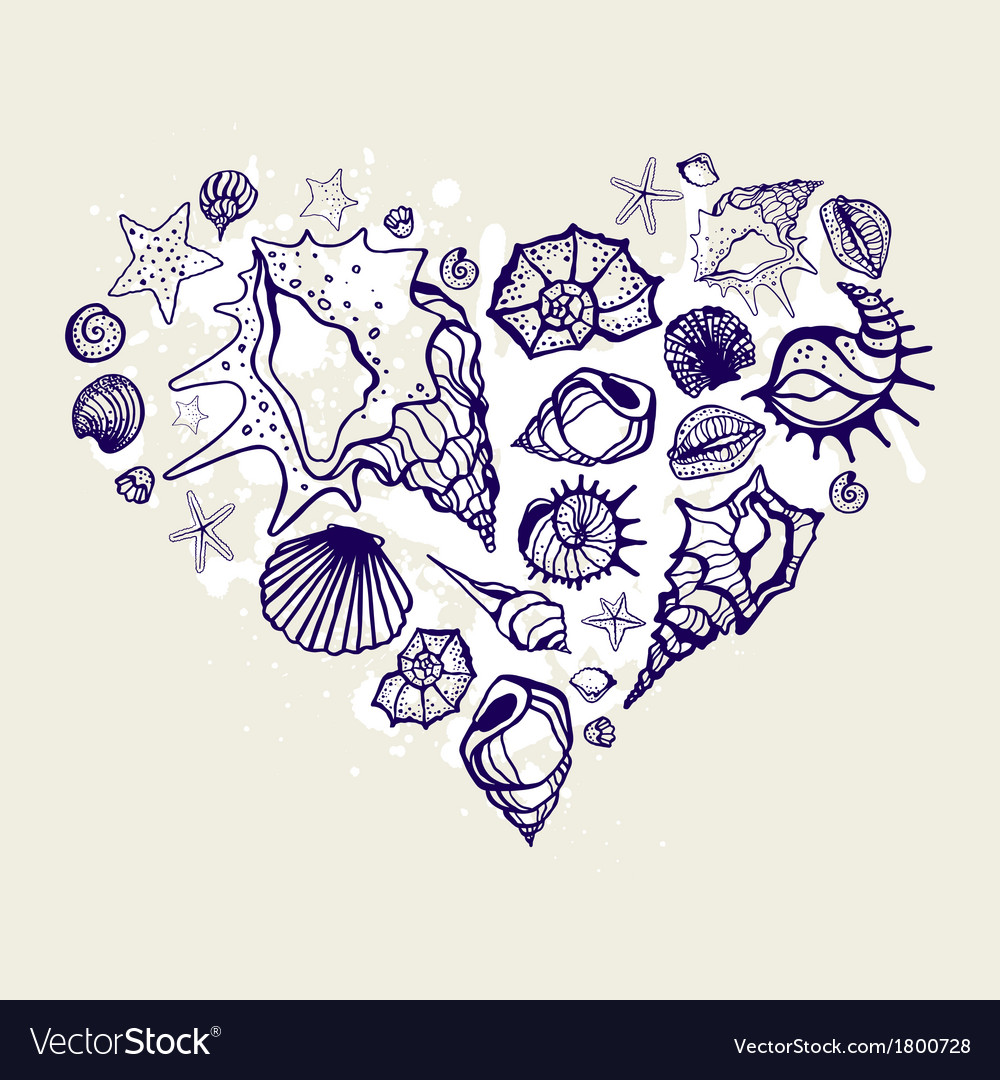 Heart of the shells vector