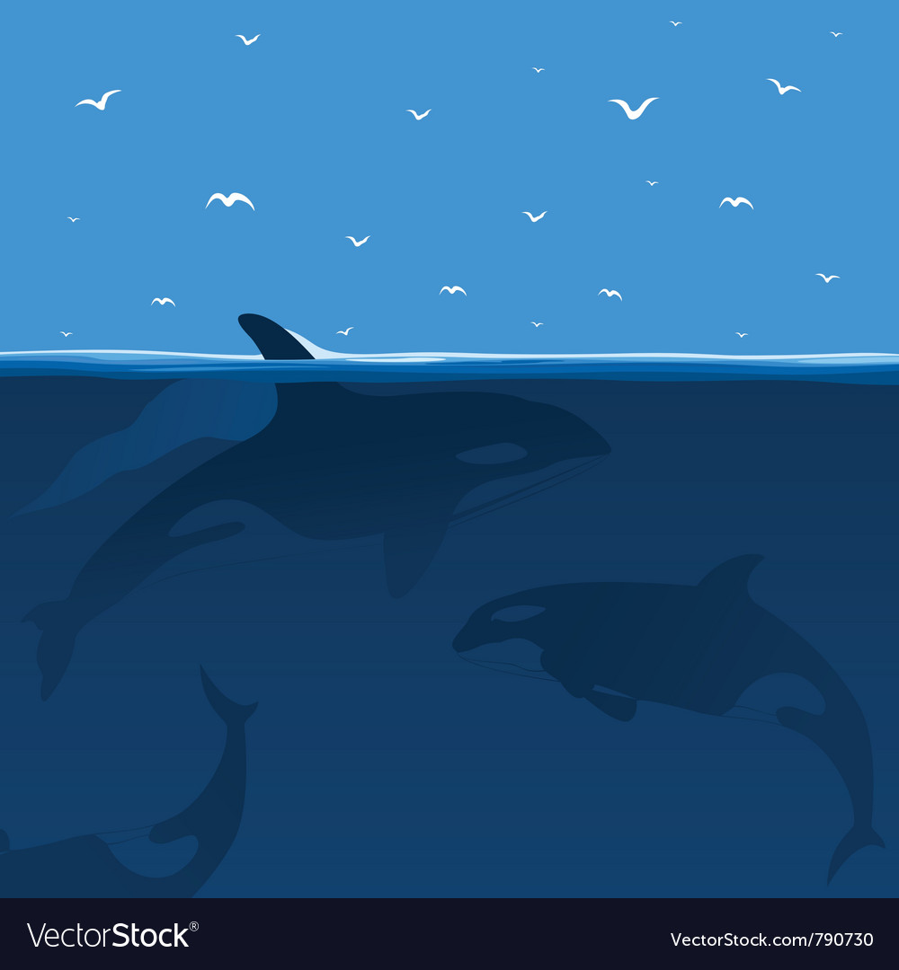 Whales hunt vector | Price: 1 Credit (USD $1)