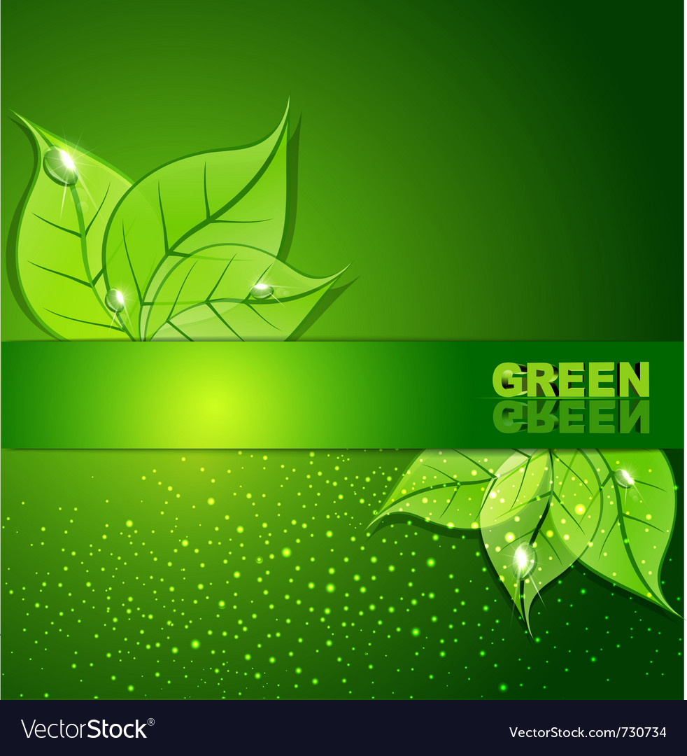 Green background with leaves and drops of dew vector | Price: 1 Credit (USD $1)