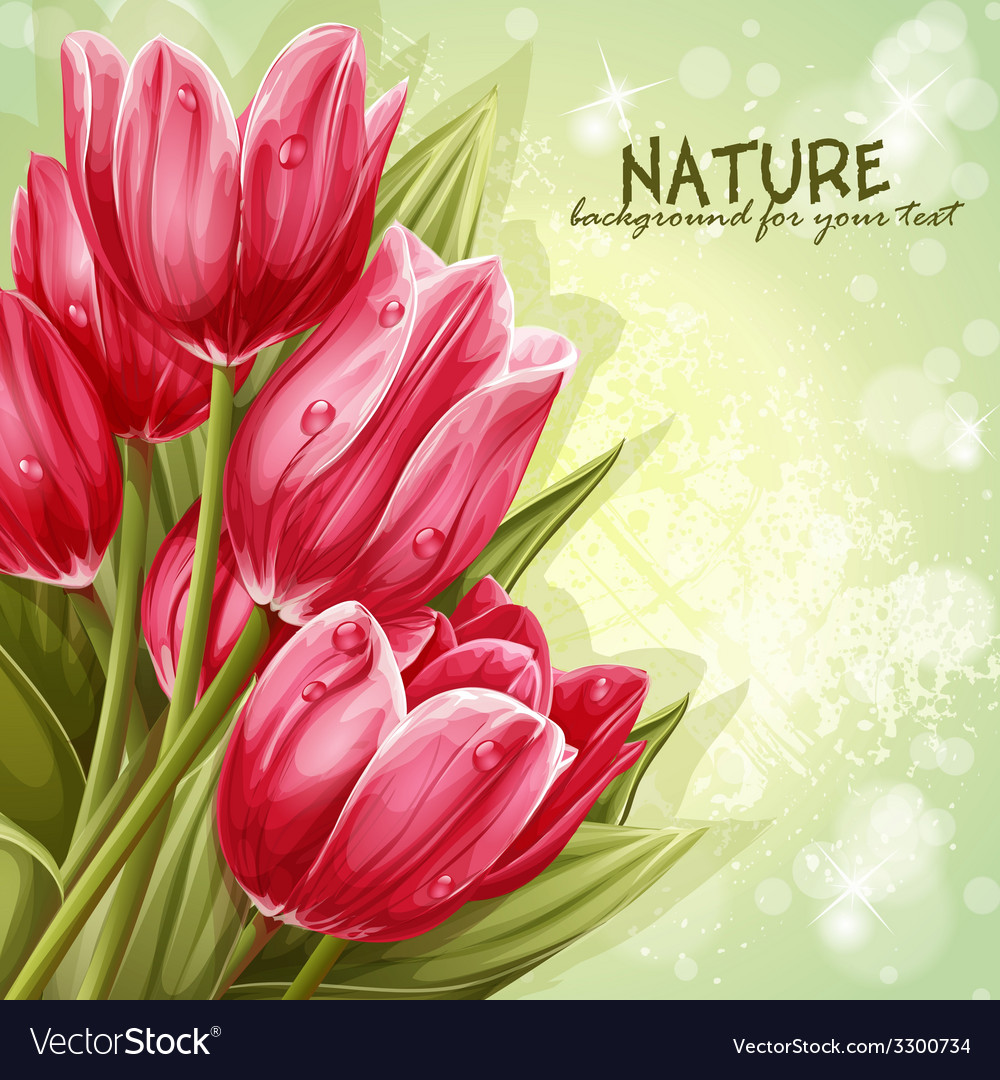 Preview background bouquet of pink tulips for your vector | Price: 5 Credit (USD $5)