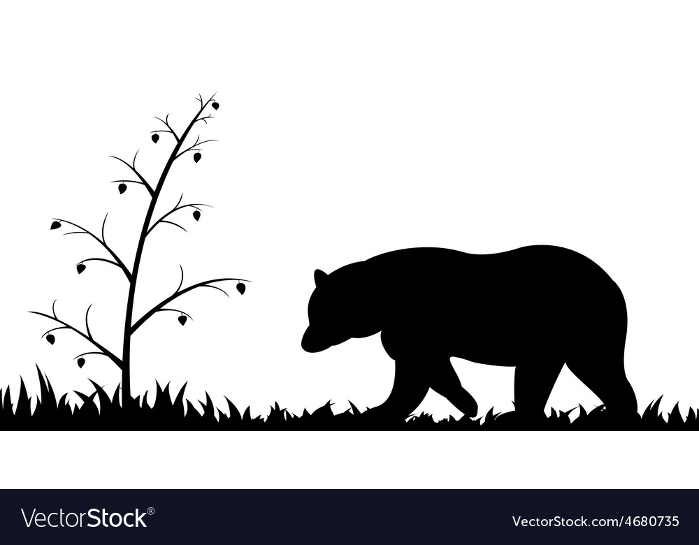 Silhouette of bear in the grass vector | Price: 1 Credit (USD $1)
