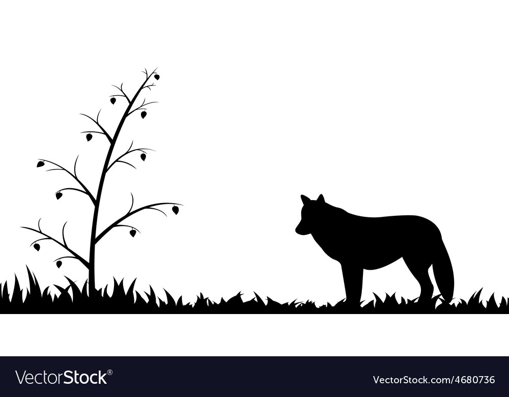 Silhouette of wolf in the grass vector | Price: 1 Credit (USD $1)