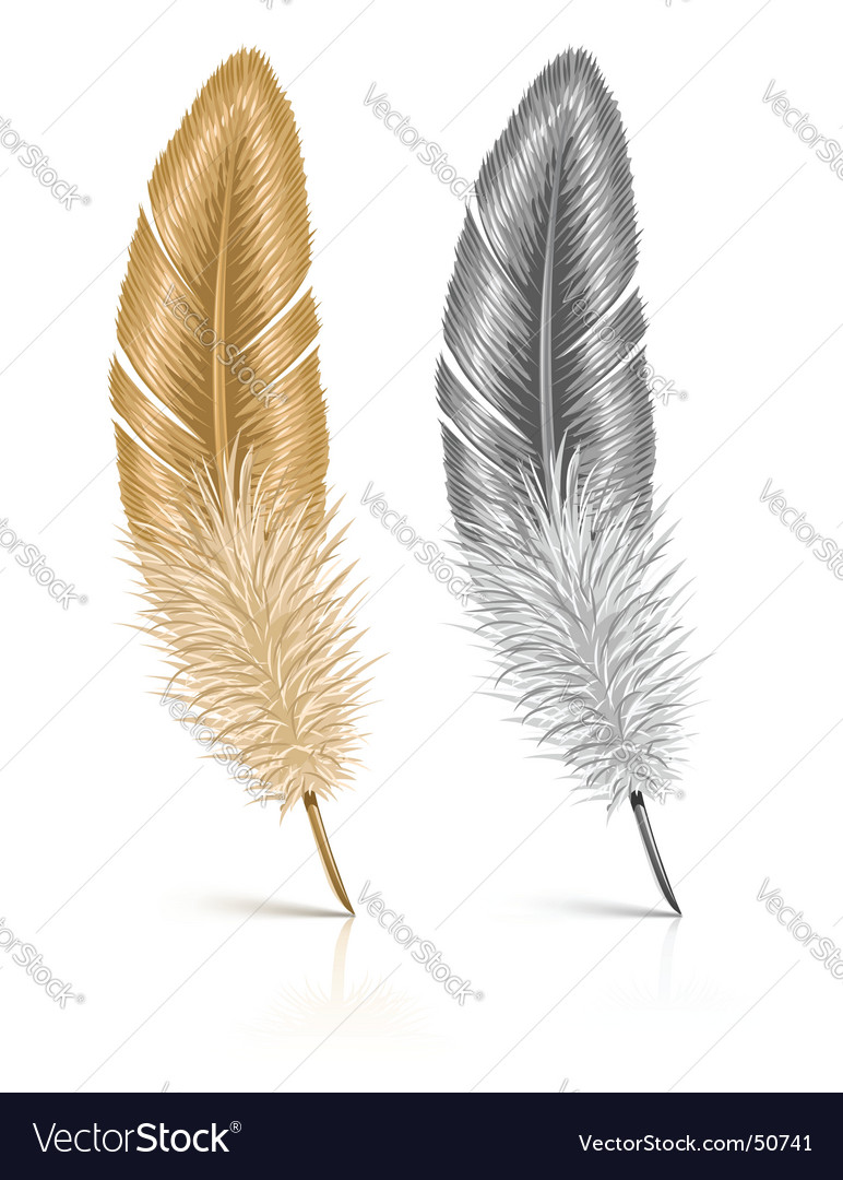 Feather isolated on white background vector | Price: 1 Credit (USD $1)