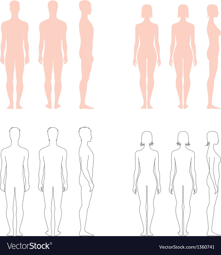 Human figure collection vector | Price: 1 Credit (USD $1)