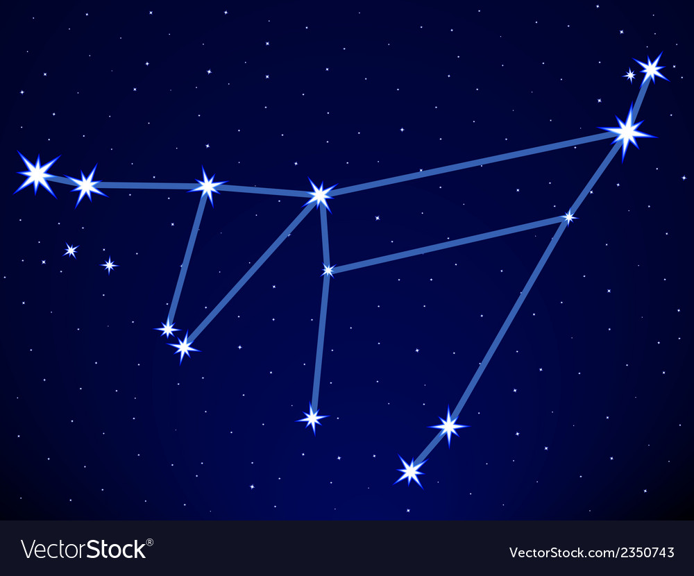 Capricornus vector | Price: 1 Credit (USD $1)
