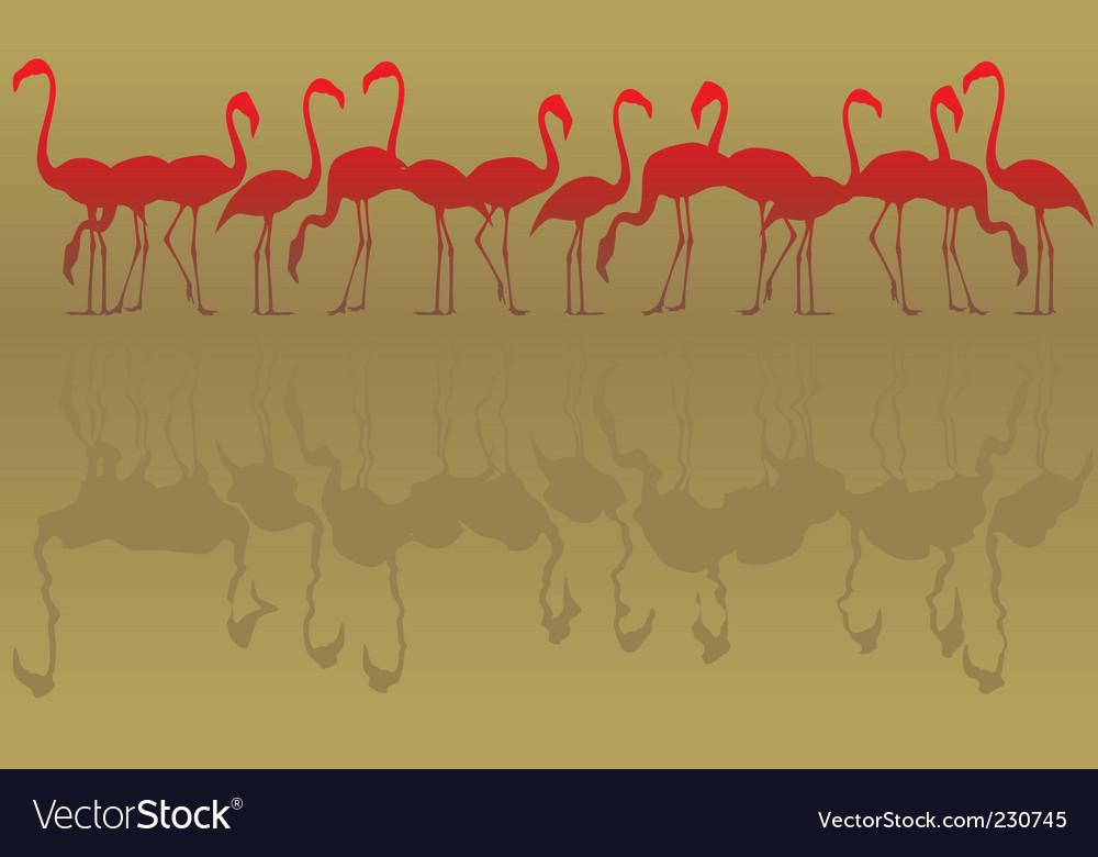 Flamingos vector | Price: 1 Credit (USD $1)