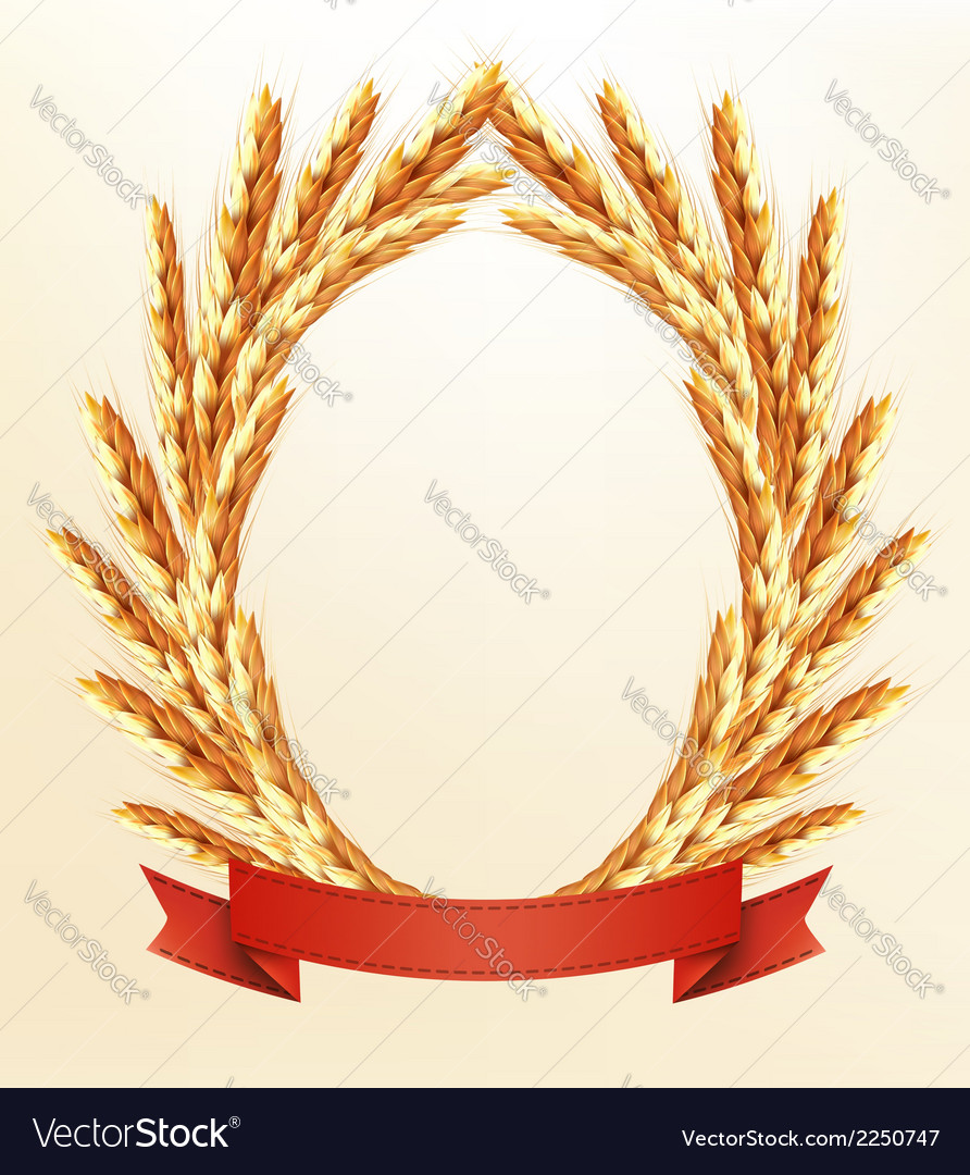 Ripe yellow wheat ears with red ribbons background vector | Price: 1 Credit (USD $1)