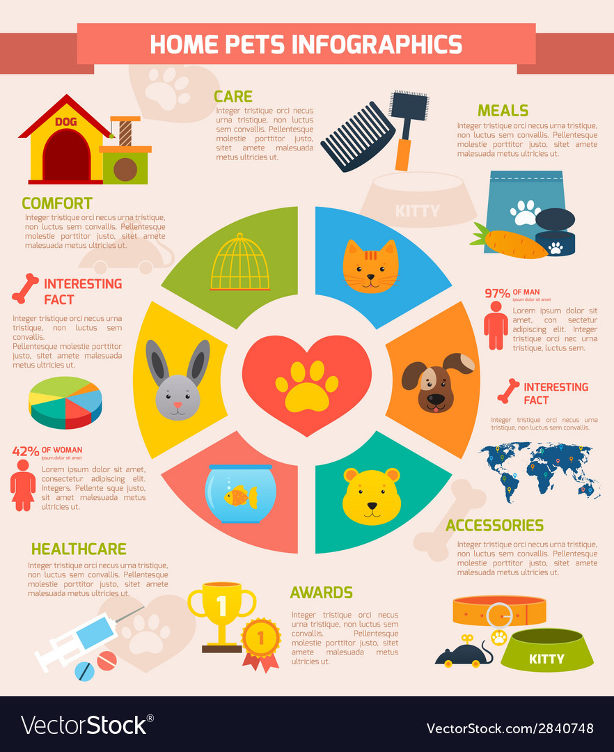 Pets infographic set vector | Price: 1 Credit (USD $1)