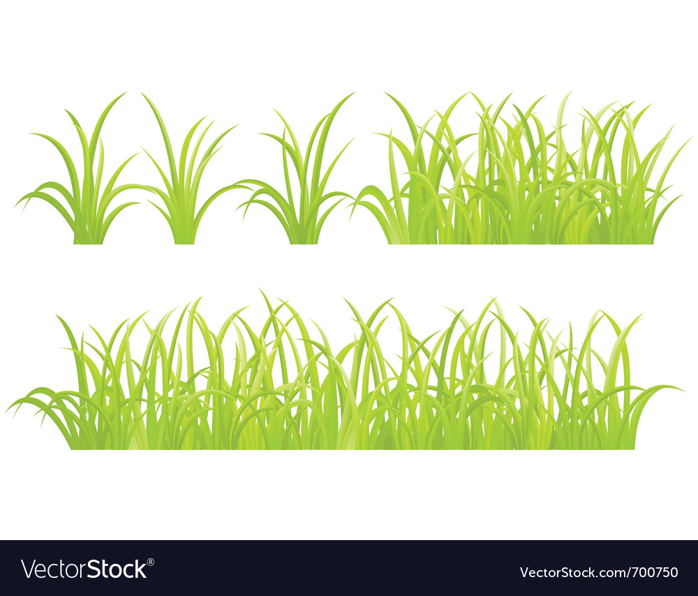 Grass elements vector | Price: 1 Credit (USD $1)