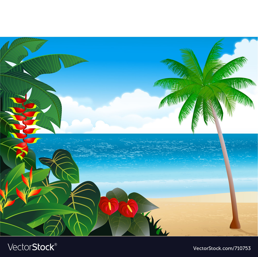 Beautiful tropical beach vector | Price: 1 Credit (USD $1)