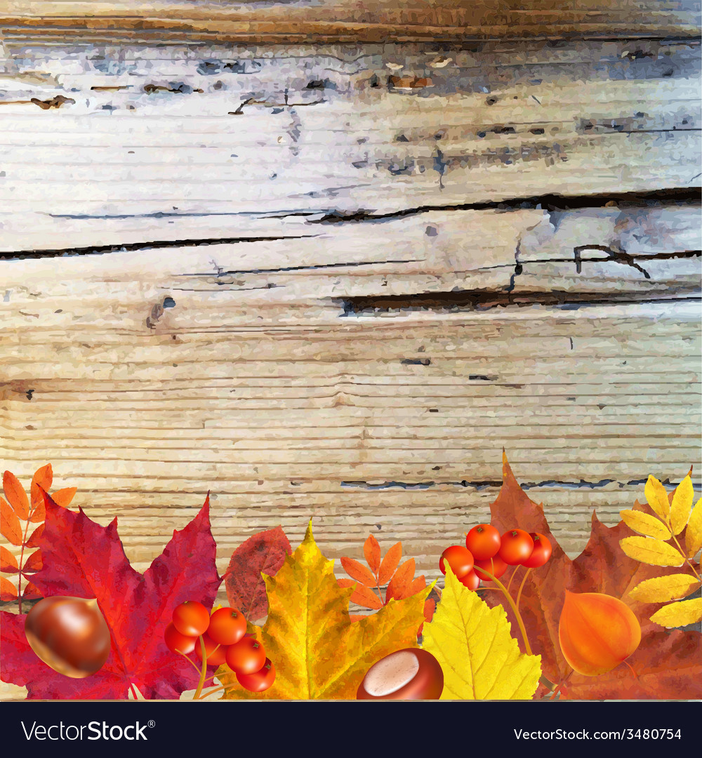 Autumn border with wood vector | Price: 1 Credit (USD $1)