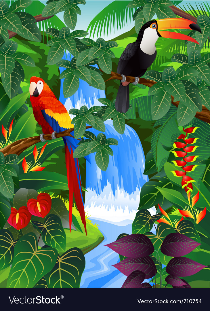 Tropical forest vector | Price: 3 Credit (USD $3)