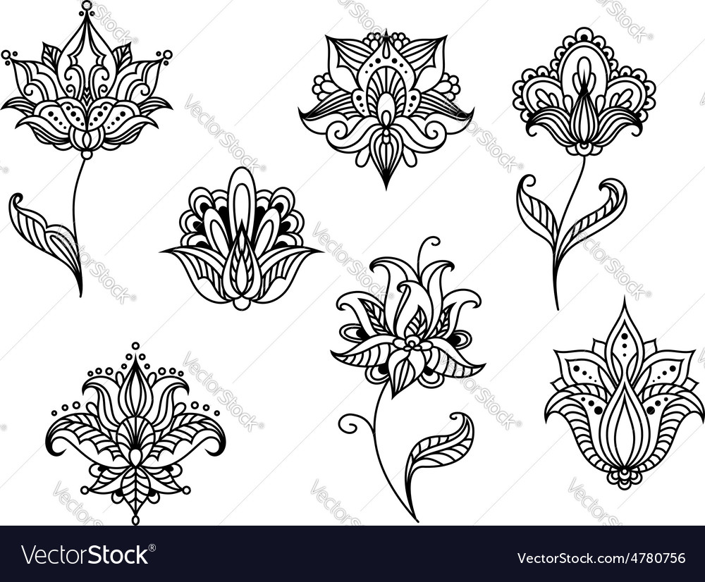 Persian paisley flowers and blossoms vector | Price: 1 Credit (USD $1)