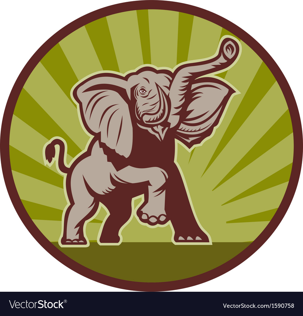 African elephant charging attacking vector | Price: 1 Credit (USD $1)