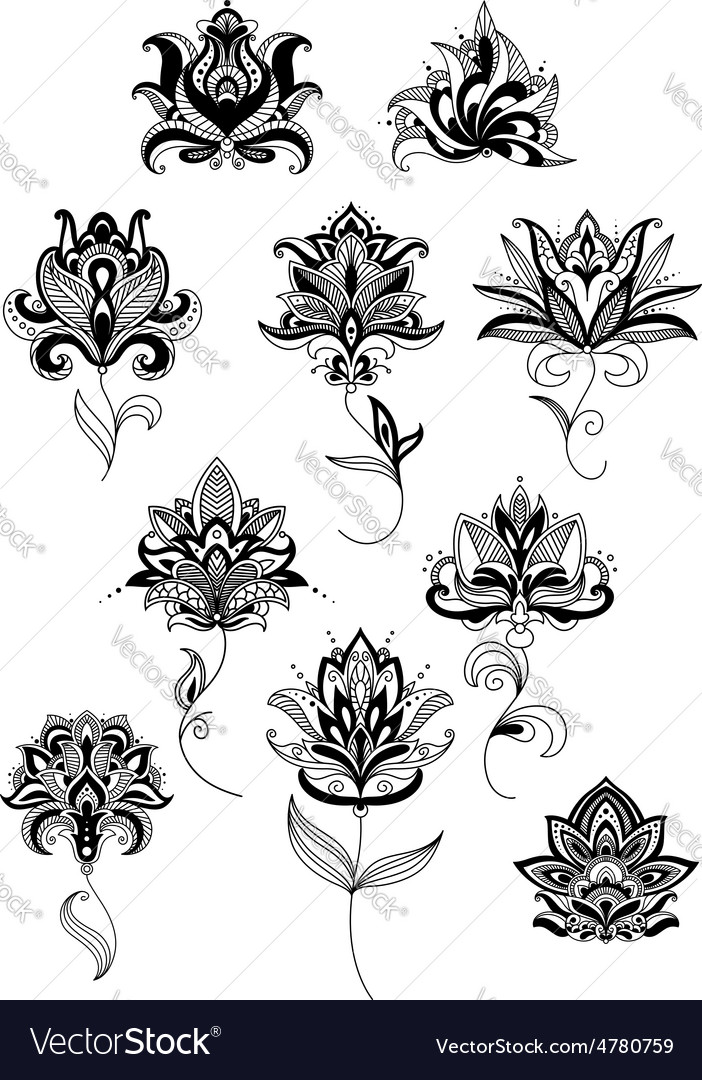 Outline paisley flowers with lush blooms vector | Price: 1 Credit (USD $1)