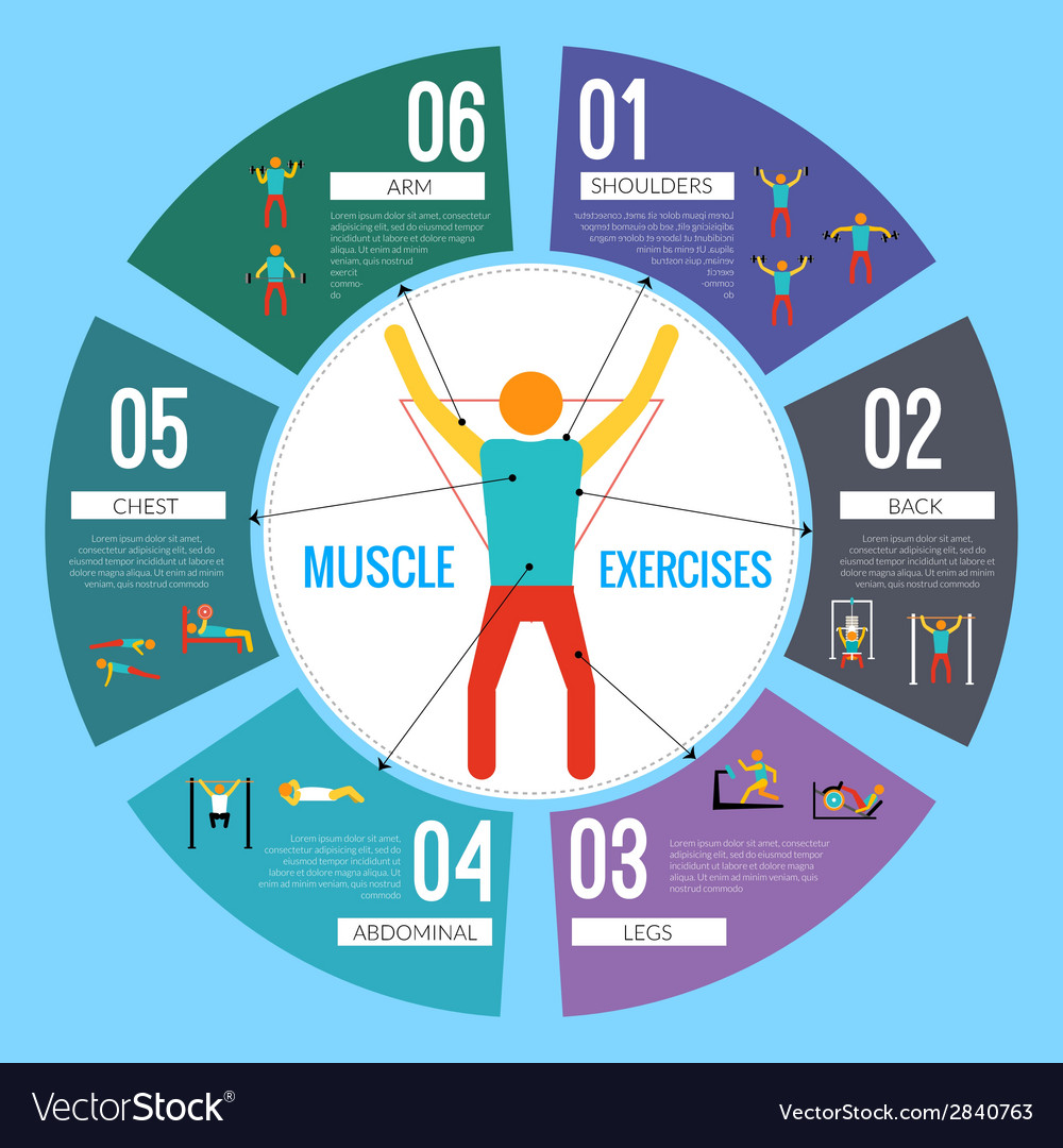 Workout training infographics vector | Price: 1 Credit (USD $1)