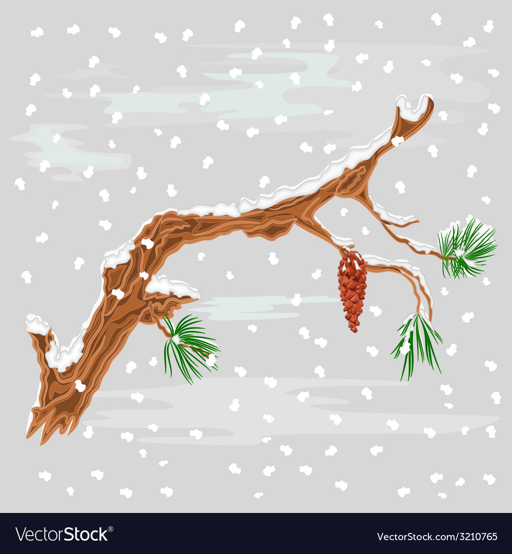 Branch of christmas tree with snowflakes vector | Price: 1 Credit (USD $1)