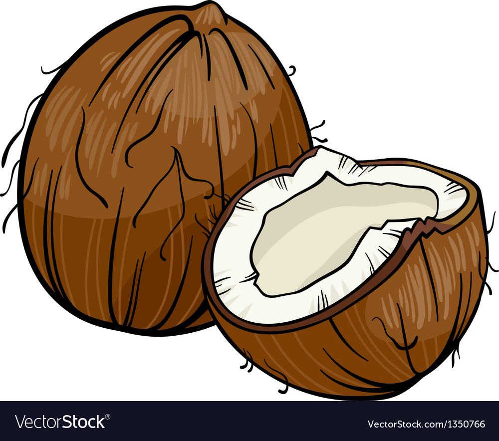 Coconut cartoon vector | Price: 1 Credit (USD $1)