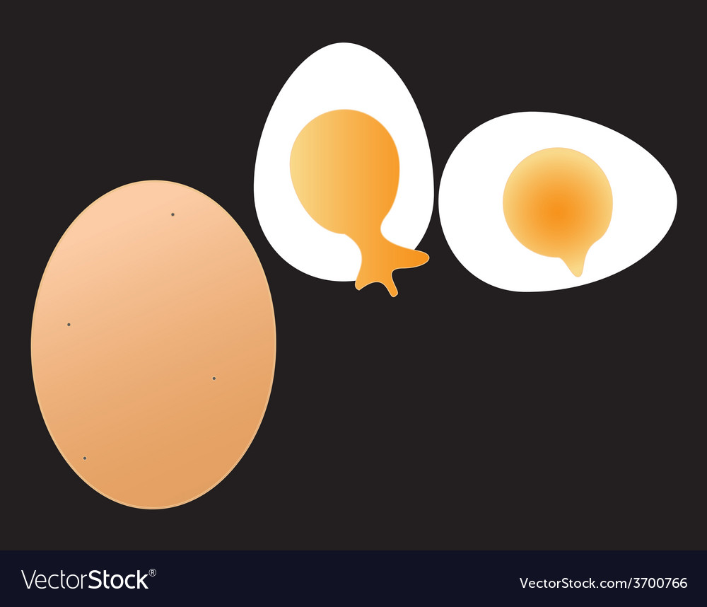 Egg vector   Price: 1 Credit (USD $1)