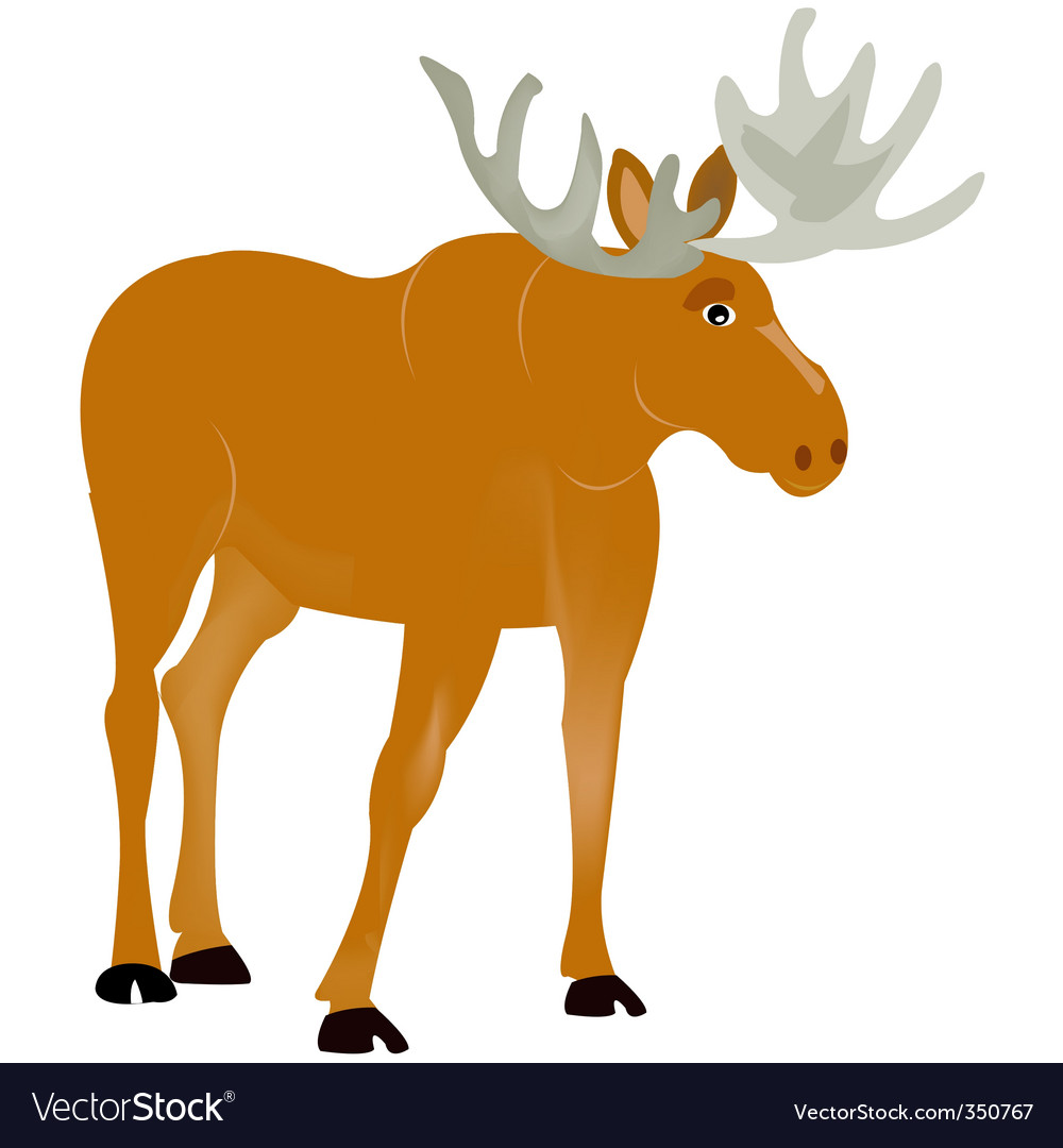 Animal moose vector | Price: 1 Credit (USD $1)