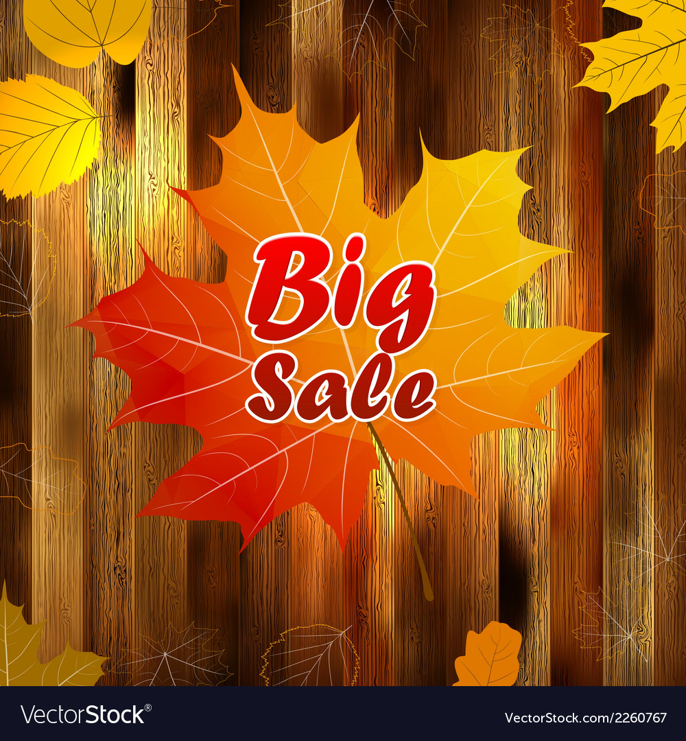 Autumn sale wood and leaves poster plus eps10 vector | Price: 1 Credit (USD $1)