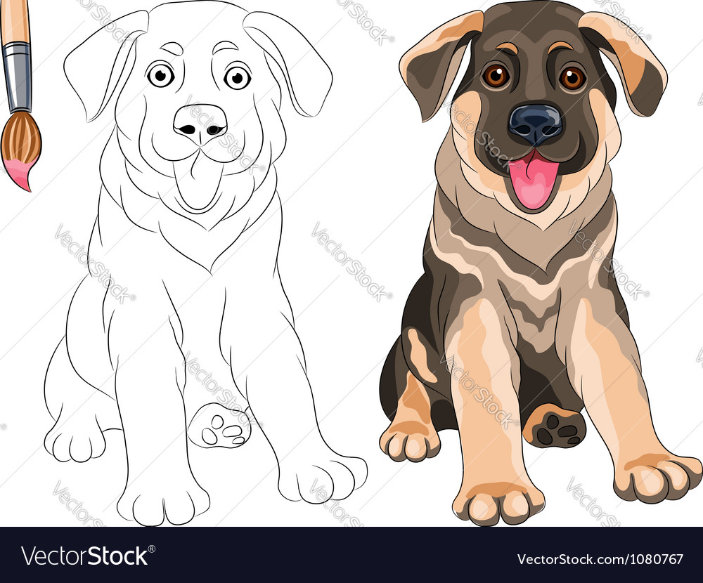 Coloring book of funny puppy german shepherd vector | Price: 3 Credit (USD $3)