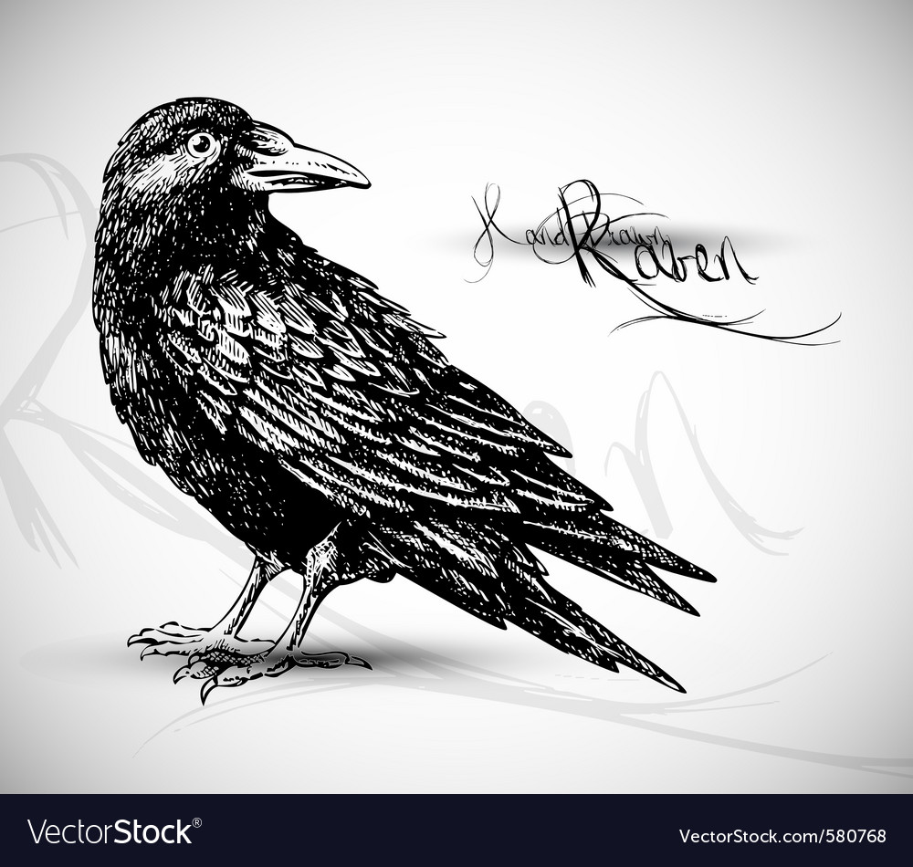 Bird sketch vector | Price: 1 Credit (USD $1)