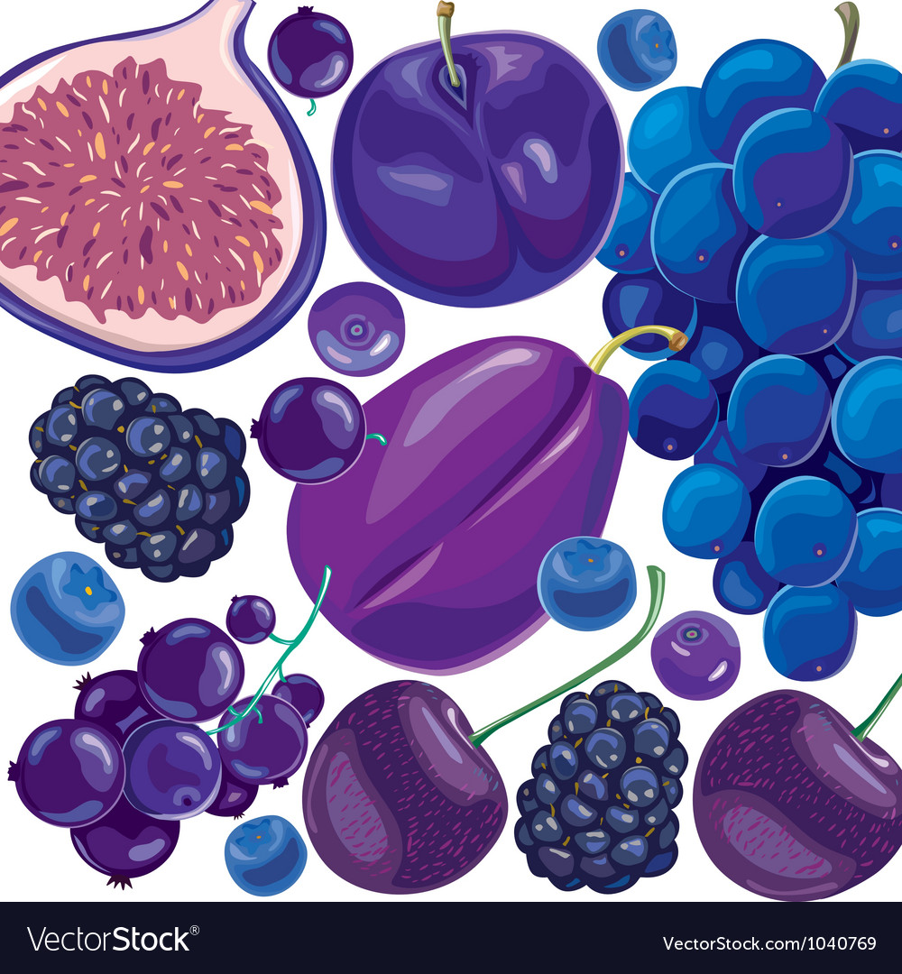 Mix blue and lilac fruits and berries vector | Price: 3 Credit (USD $3)