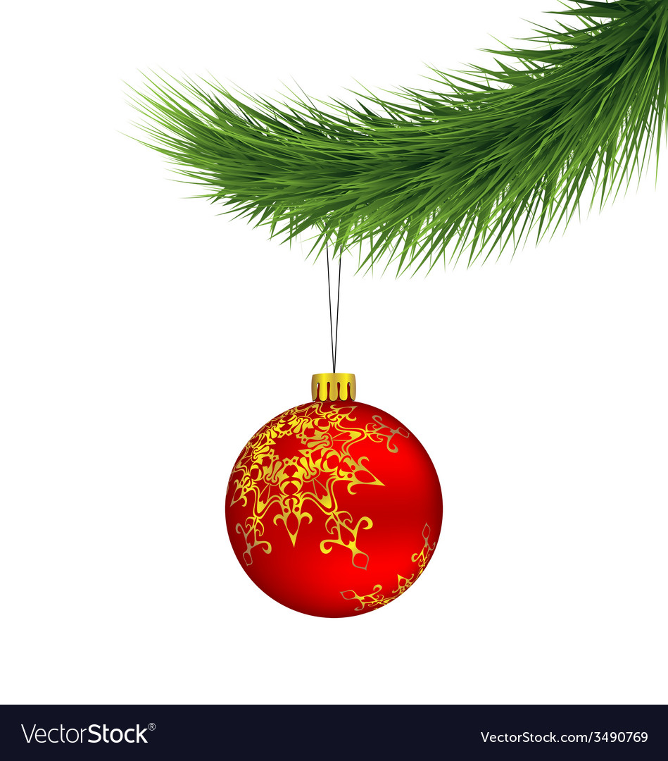 Red christmas ball on pine branch isolated on vector | Price: 1 Credit (USD $1)