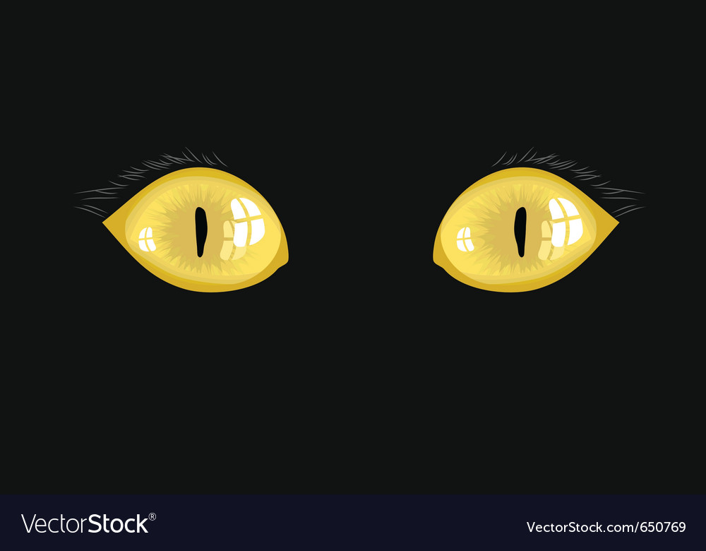 Yellow cat eyes vector | Price: 3 Credit (USD $3)