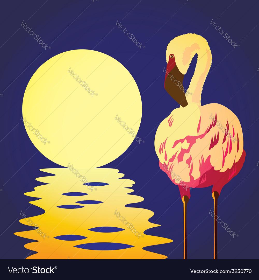 Flamingo in the sun vector | Price: 1 Credit (USD $1)