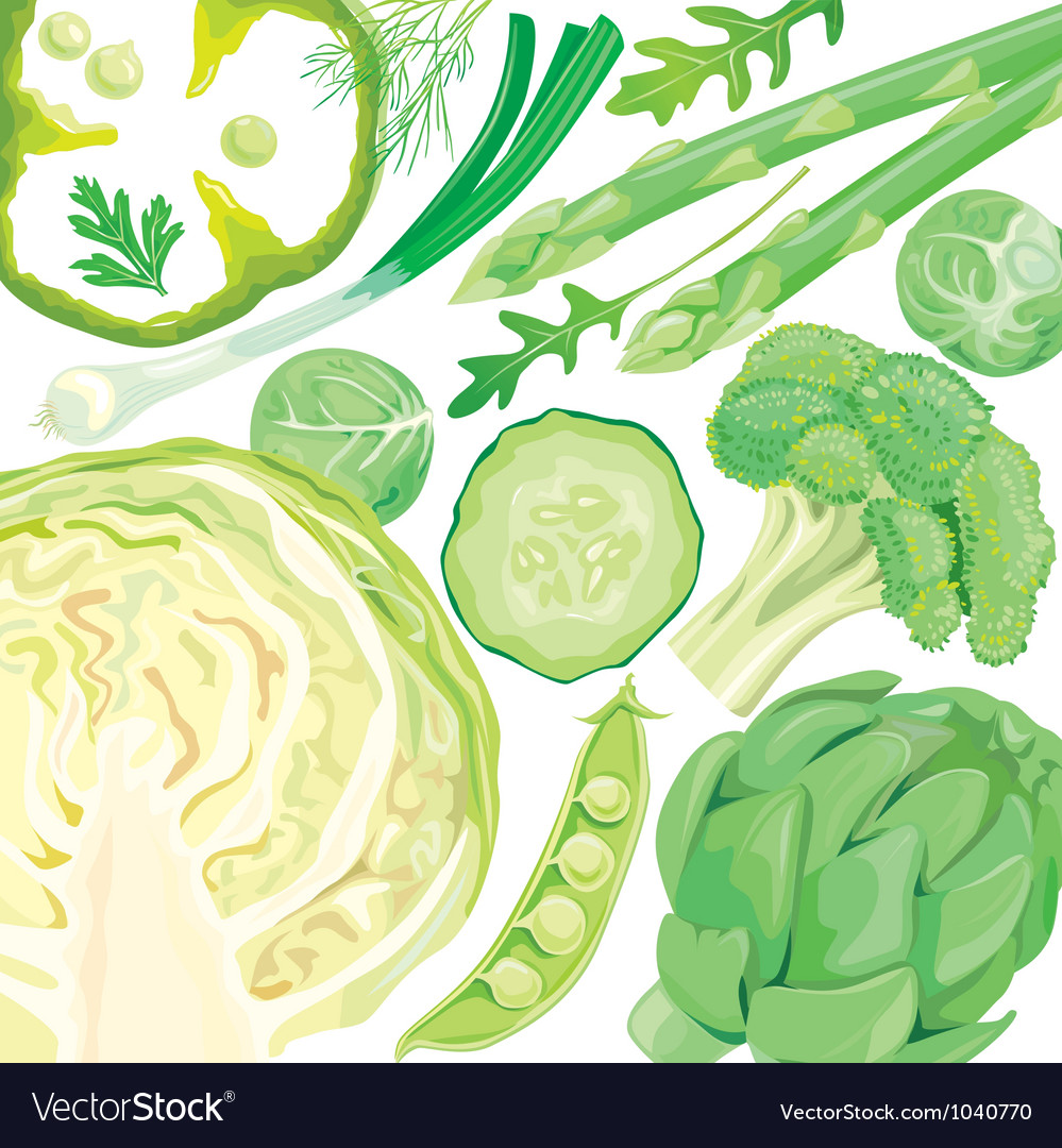 Mix of green vegetables vector | Price: 3 Credit (USD $3)
