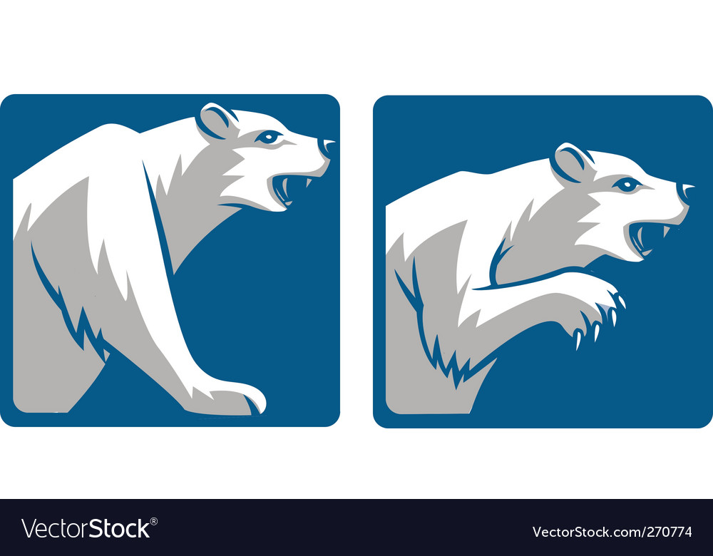 Bear mascot vector | Price: 1 Credit (USD $1)