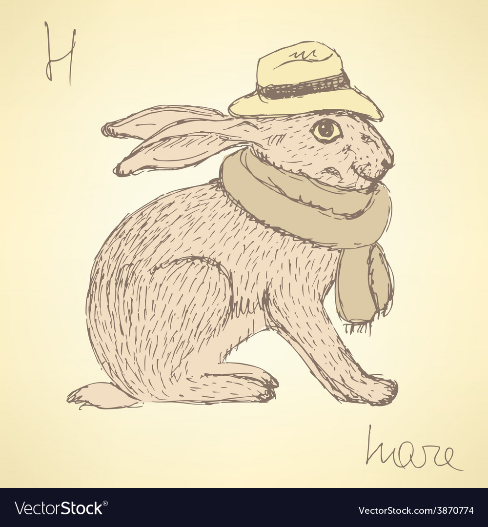 Sketch fancy hare in vintage style vector | Price: 1 Credit (USD $1)