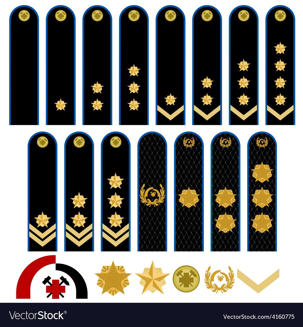 Insignia professional rescue service of the vector | Price: 1 Credit (USD $1)