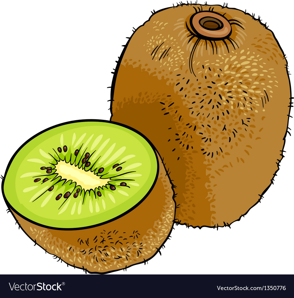 Kiwi fruit cartoon vector | Price: 1 Credit (USD $1)