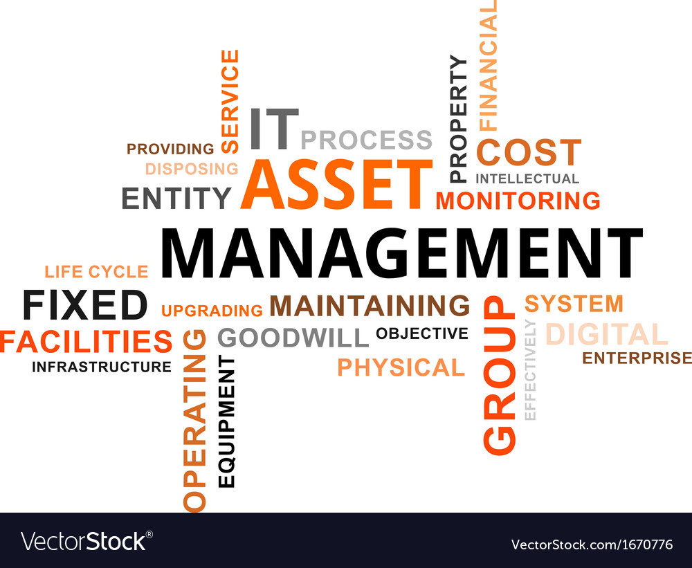 Word cloud asset management vector | Price: 1 Credit (USD $1)