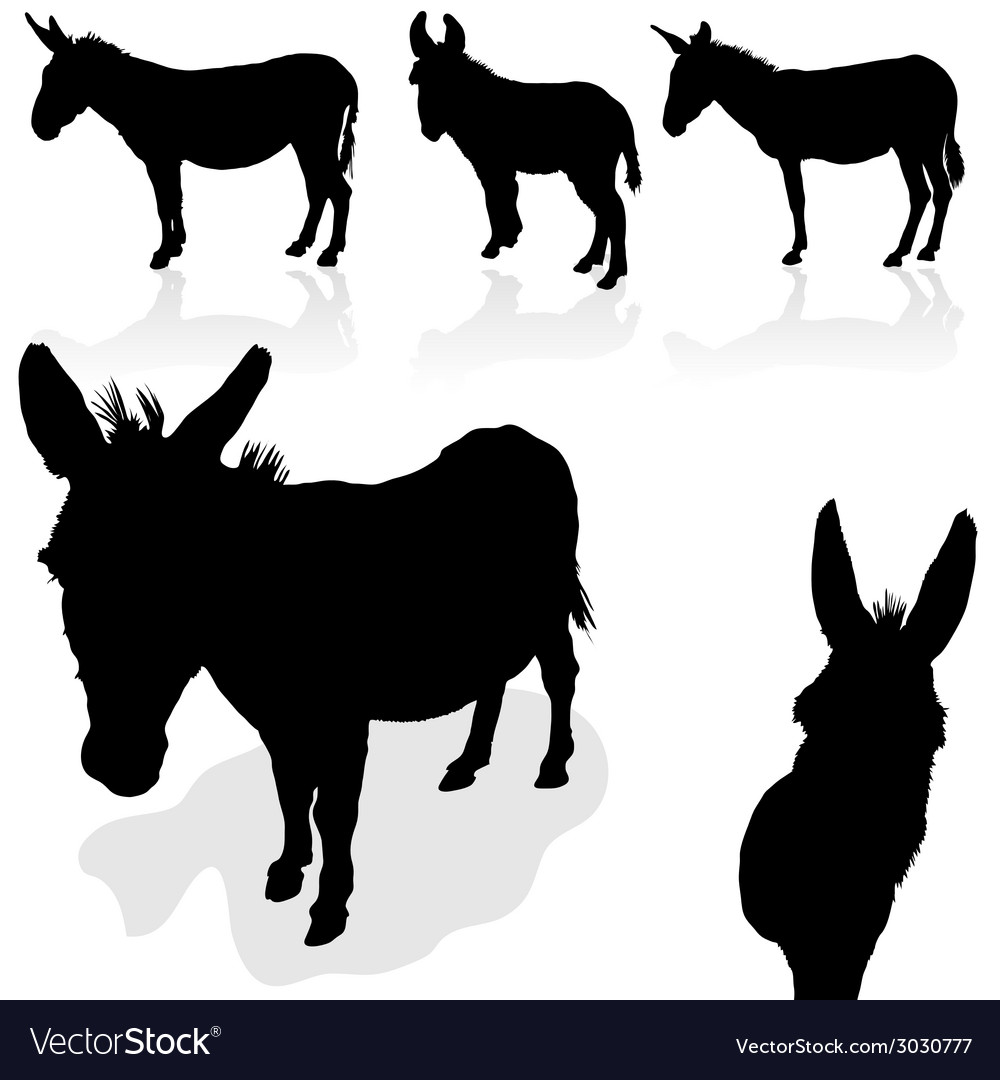 Donkey black silhouette vector | Price: 1 Credit (USD $1)