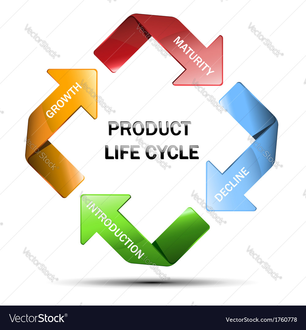 Diagram of product life cycle vector | Price: 1 Credit (USD $1)