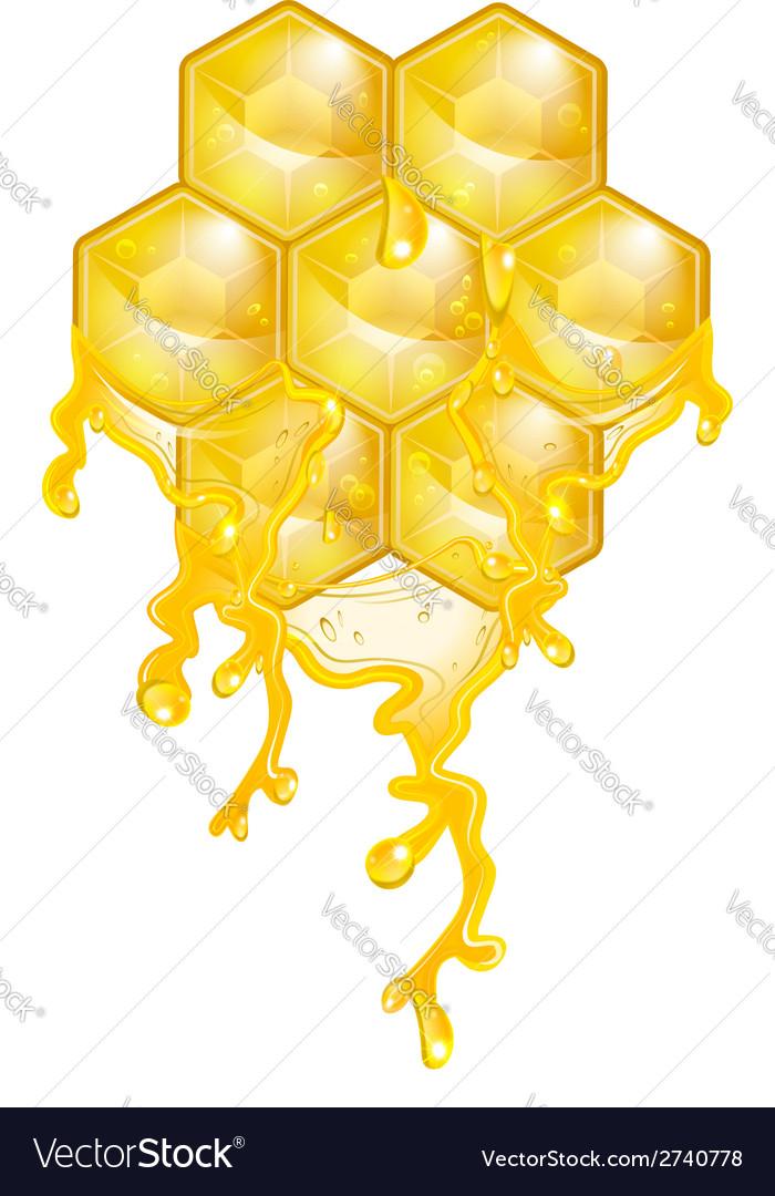 Honey vector | Price: 1 Credit (USD $1)