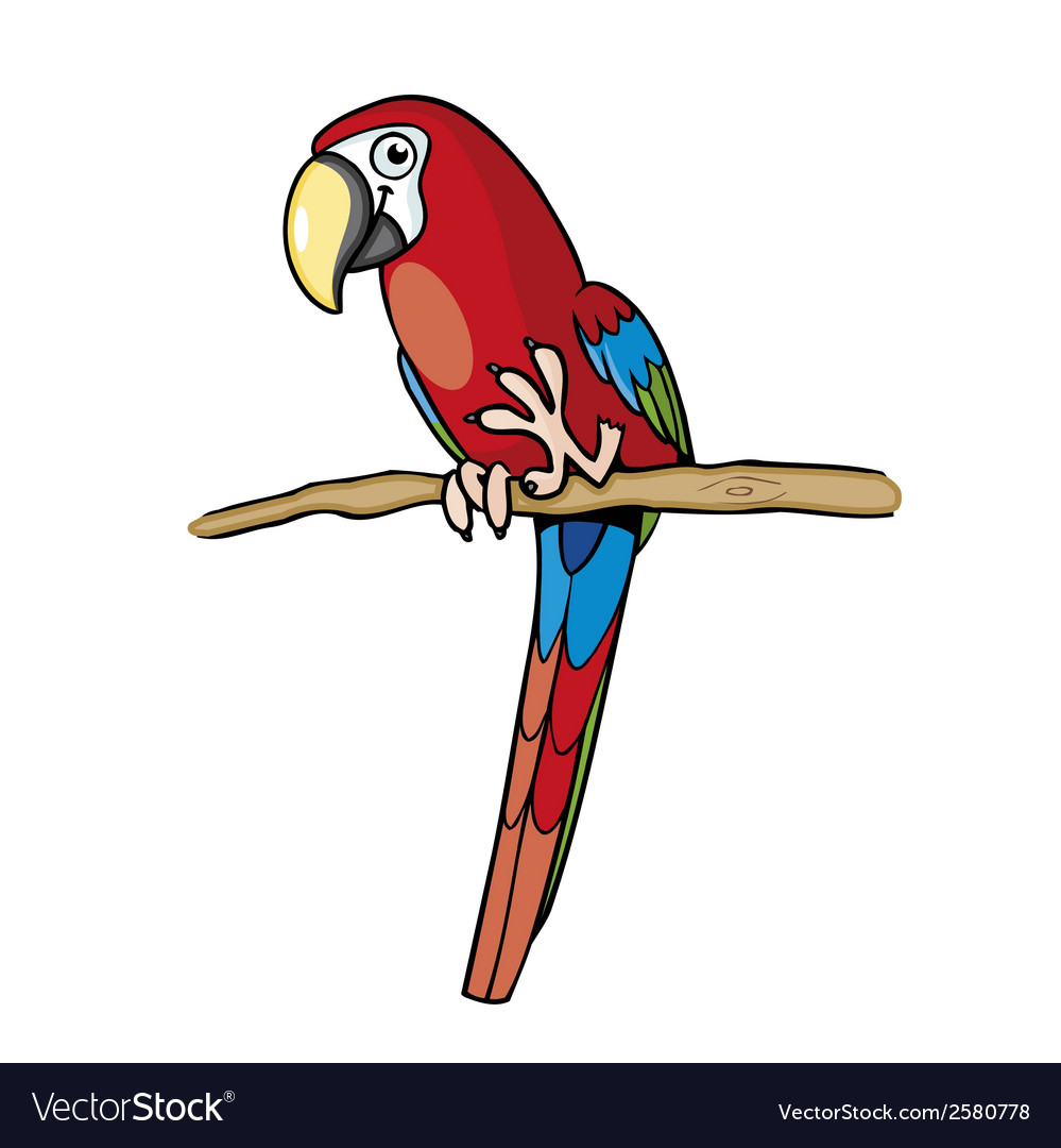 Red parrot vector | Price: 1 Credit (USD $1)