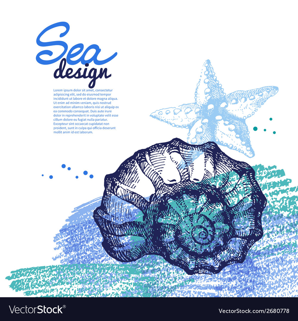 Seashell background sea nautical design vector | Price: 1 Credit (USD $1)