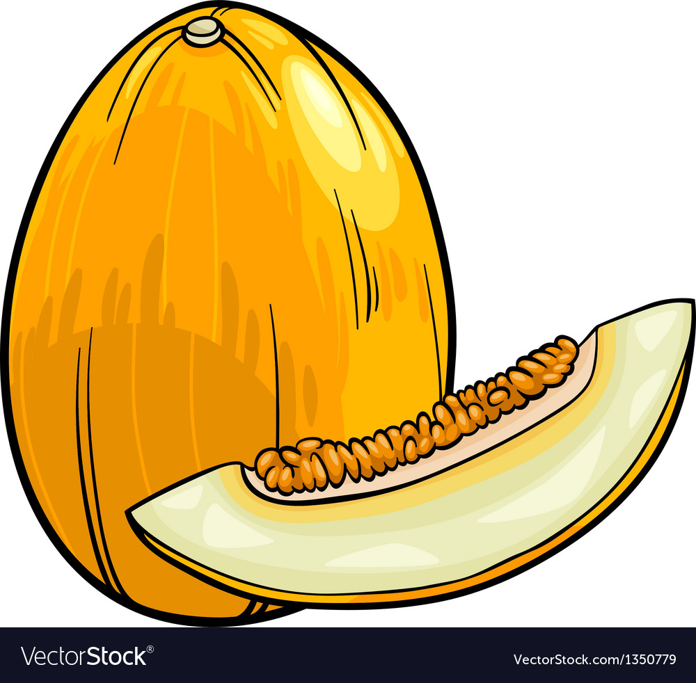 Melon fruit cartoon vector | Price: 1 Credit (USD $1)